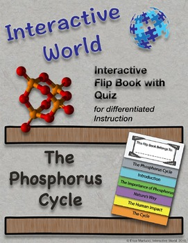 The Phosphorus Cycle Interactive Flip Book and Quiz