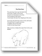 The Polar Bear (A nonfiction article)
