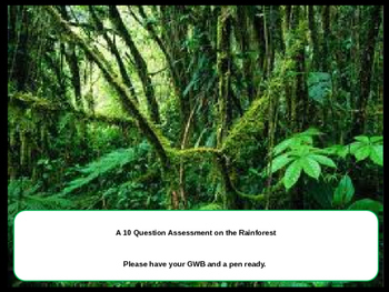 The Rainforest 10 Question Quiz Starter