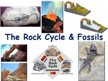 The Rock Cycle and Fossils Flashcards-study guide, state e
