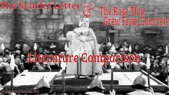 The Scarlet Letter Literature Comparison Assignment