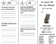 The Screech Owl Who Liked Television Trifold - Journeys 3r