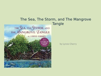 The Sea, The Storm, The Mangrove Tangle