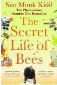 The Secret Life of Bees - Plot Summary in Cloze Format