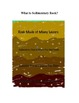 The Sedimentary Rock: Music meets Geology