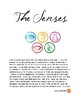 Physiology: The Senses