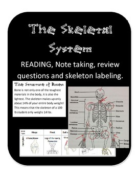 The Skeletal System: Joint & Skeleton function, nonfiction
