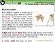 The Skeletal System - Joints and Cartilage - NOTEBOOK Gr. 3-8