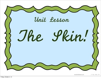 The Skin System Lesson - Powerpoint or Flipped Classroom Base
