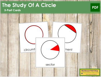 Study of a Circle: 3-Part Cards