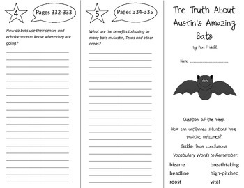 The Truth About Austin's Amazing Bats Trifold - Reading St