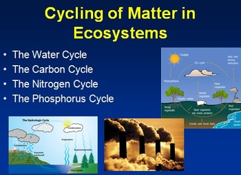 The Water Cycle, The Carbon Cycle, The Nitrogen Cycle, and