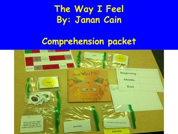 The Way I Feel by Janan Cain -Book Study, Comprehension Pa