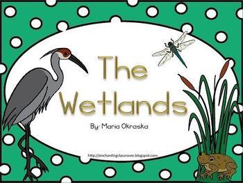 The Wetlands Habitat Mini Unit