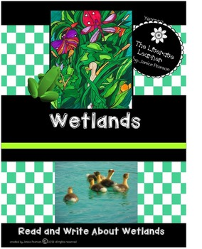 The Wetlands 2nd and 3rd Grade