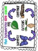 The butterfly life cycle mini unit