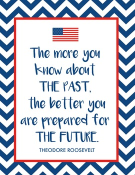 Theodore Roosevelt History Quote