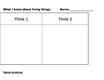 Think1 and Think2 - a visible thinking assessment tool for