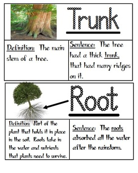 Third Grade Ready Gen Unit 1 Module B At the Root of It Vo