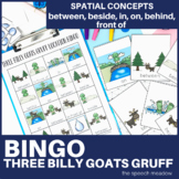 Three Billy Goats Gruff: Preposition Bingo