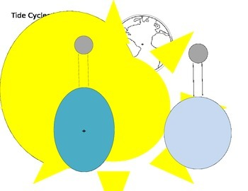 Tide Cycle Model