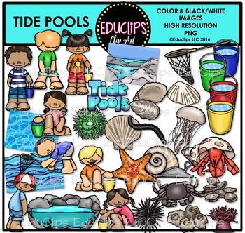 Tide Pools Clip Art Bundle {Educlips Clipart}