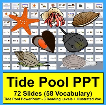 Tide Pools PowerPoint - 3 Reading Levels + 53 Illustrated