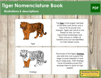 Tiger Nomenclature Book