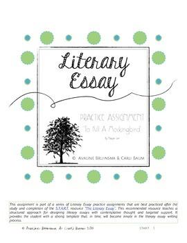 To Kill a Mockingbird - Literary Essay Writing Assignment