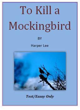 To Kill a Mockingbird Test, Essays Only