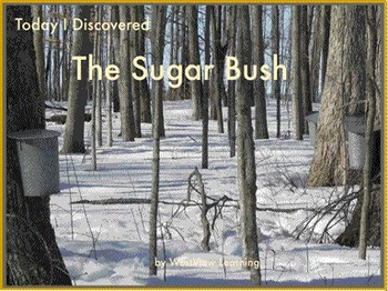Today I Discovered The Sugar Bush