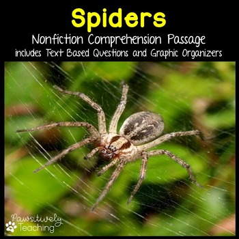 Spider Reading Passage Nonfiction Text & Questions