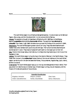 Tooth Billed Pigeon - Article Facts Information Questions
