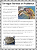 Tortugas Marinas/Sea Turtles Authentic Reading + ONLINE IN