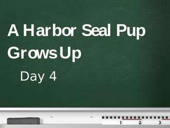 Treasures - 2nd Grade - A Harbor Seal Pup Grows Up - Day 4
