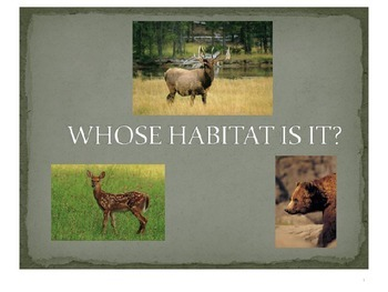 Treasures Whose Habitat is it vocabulary PowerPoint