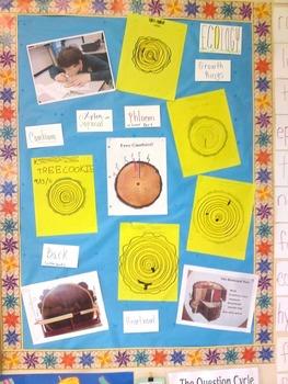 Tree Cookies - a Tree Biography