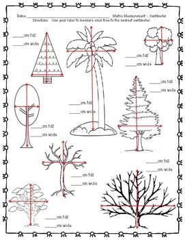 Tree Measurement