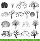 Tree Silhouettes Clipart with Separate Leaves