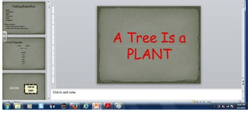 Tree is a Plant- Lesson 24- Journeys