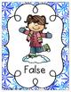 True or False Equation Snowflakes Sort {Freebie!}