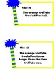 Truffula Trees- Lorax- Math Center- Grade 3