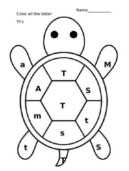 Tt Turtle