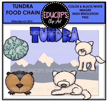 Tundra Food Chain Clip Art Mini Bundle {Educlips Clipart}