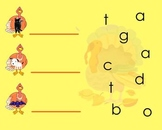 Turkey CVC Word Spelling