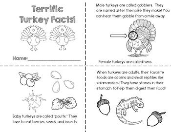 Turkey Fact Book
