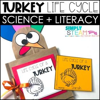 Thanksgiving Activity: Turkey Life Cycle Mini-Book & Activ