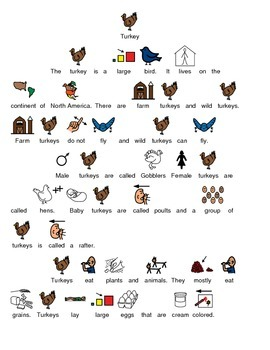 Turkey - Picture supported text review article lesson with