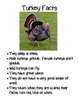 Turkey Trouble Thanksgiving Storybook Companion