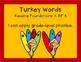 Thanksgiving Phonics - Turkey Words - Building Words